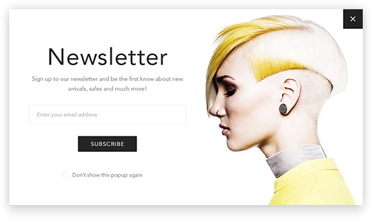 Newsletter popup plugin is included in the Avenue Theme