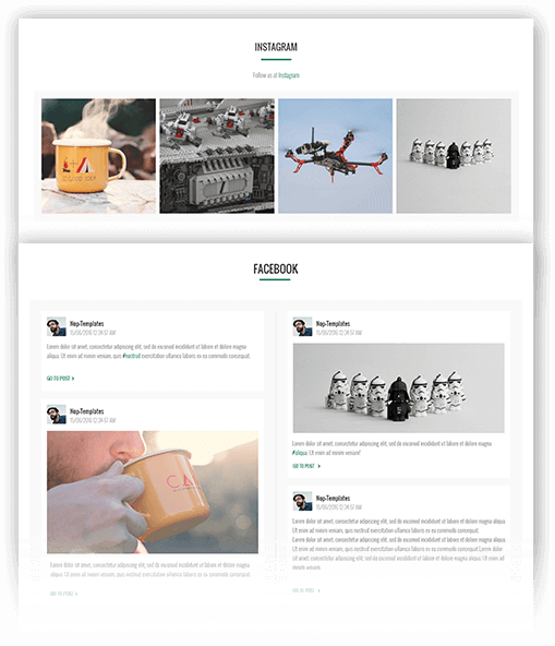 Element Theme Features - Social Feed plugin included