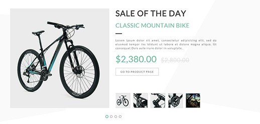 Native Theme Features - Sale of the Day plugin included