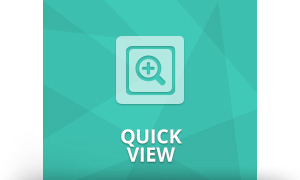 quick view plugin