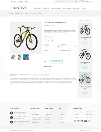 Native Theme - Product Page