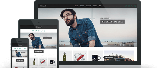 Preview of Element Theme for nopCommerce