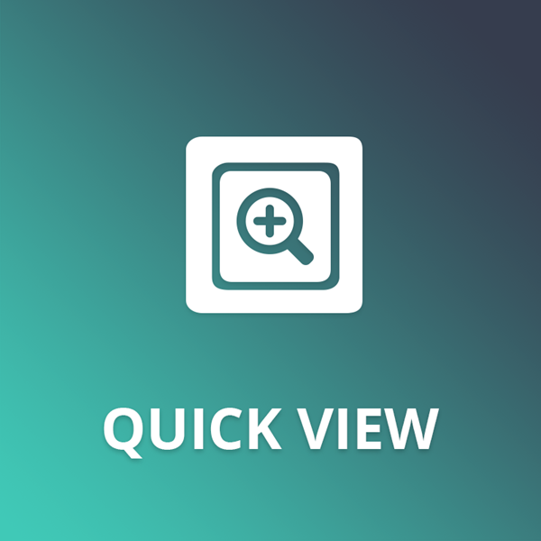 Quick View plugin for nopCommerce